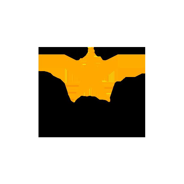 estrella-damm-logo